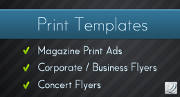 Infographic Elements + Template - 14
