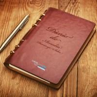 Diario de Amalia Domingo Soler