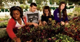 Cursos e Empregos Escola-Agrícola-RN-cursos-técnicos-2017-3 Escola Agrícola RN cursos técnicos 2017