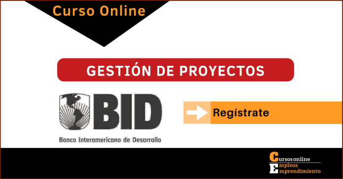 direccion de proyectos curso online BID