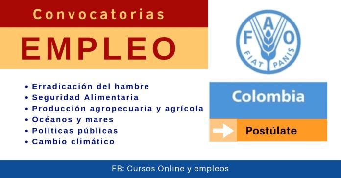 Fao Colombia y sus vacantes de empleo y convocatorias