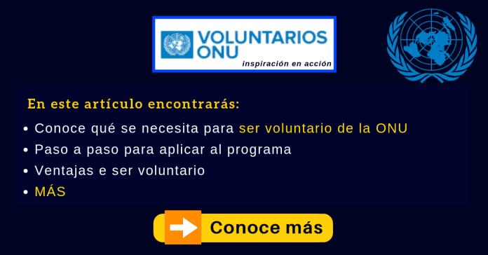 Voluntariado ONU UNV