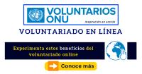 voluntariado online onu convocatoria