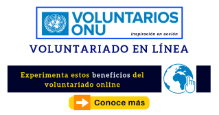 voluntariado online onu convocatoria