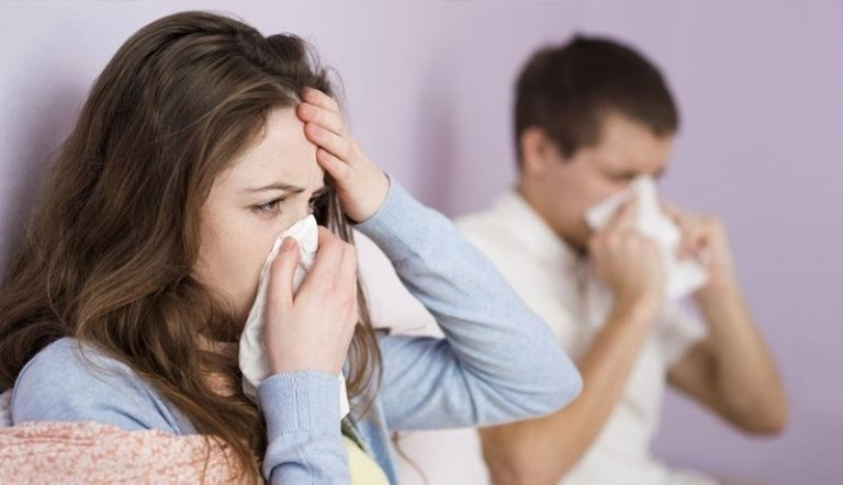 Gripe, tratamientos naturales
