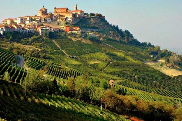 Wijnworkshop Piemonte