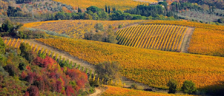 Piemonte tegenover Veneto