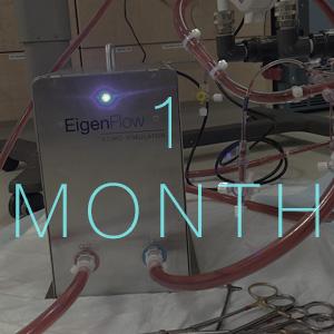 eigenflow-1-month