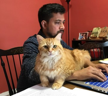 One of my cats, Lorax, helps me answer your emails.
