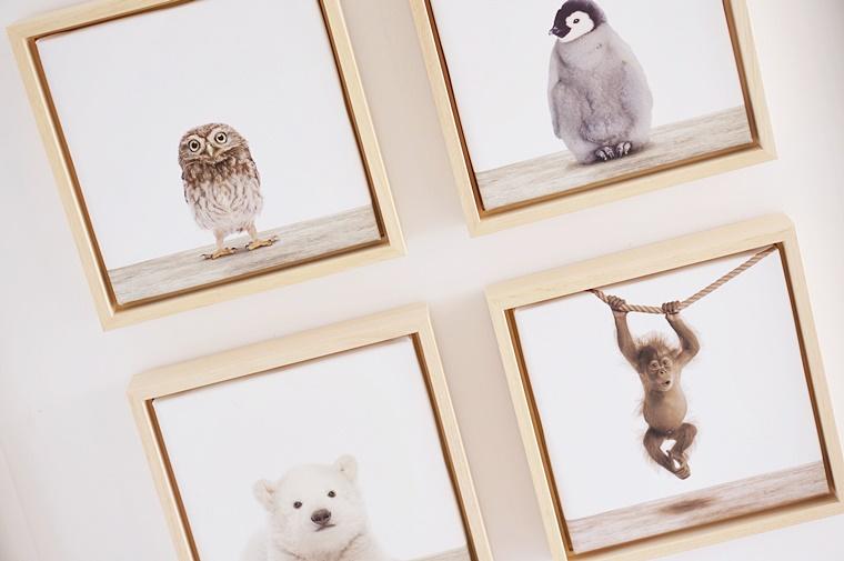 arty animals 4 - Interieur tip | Arty Animals voor aan je muur