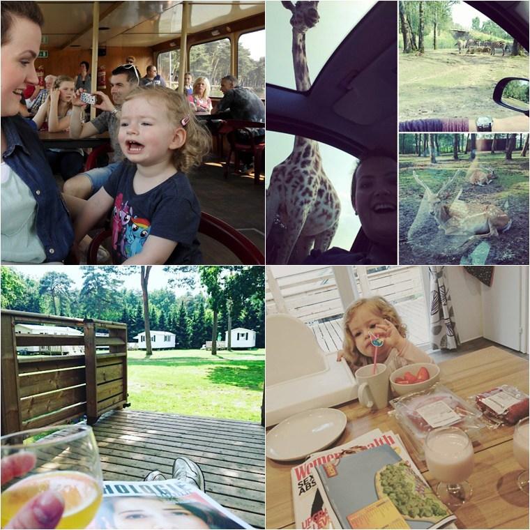 eurocamp beekse bergen 3 - Travel | Win een Eurocamp cheque t.w.v. €200,- (gesloten)
