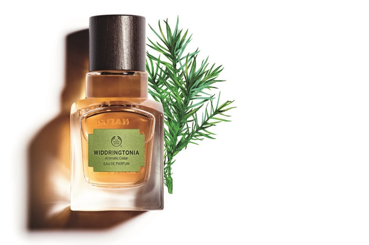 the body shop elixirs of nature review 2 - The Body Shop Elixirs of Nature | Nigritella & Widdringtonia