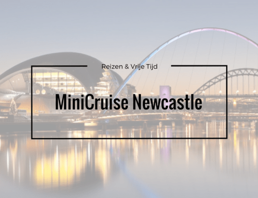 minicruise newcastle