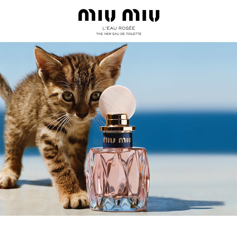luxe parfums Miu Miu L'eau Rosée
