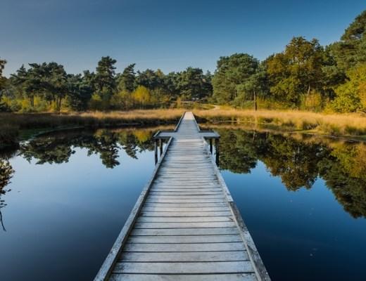 wandelroutes nederland voor het gezin (niet bekend/druk)