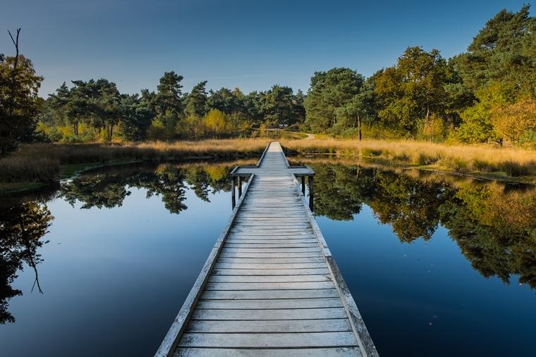 6.Maasduinen Holidu - 5 verrassend mooie wandelroutes in Nederland (die nog niet zo bekend zijn)