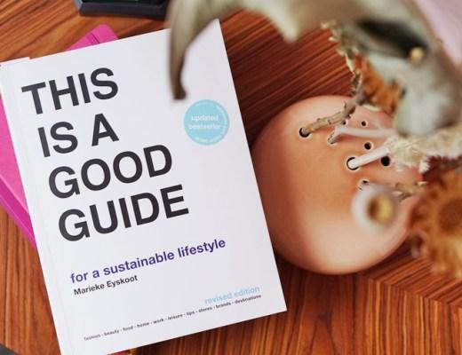 dit is een goede gids voor een duurzame lifestyle - Marieke Eyskoot boek
