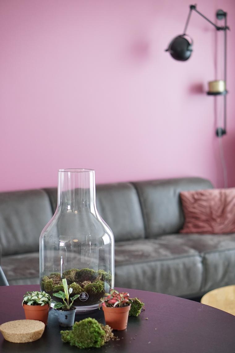 diy ecosysteem terrarium flessentuin 1 - New in | XL ecosysteem van Flessentuin