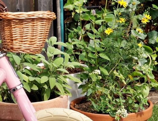 binnenkijken in onze tuin make-over
