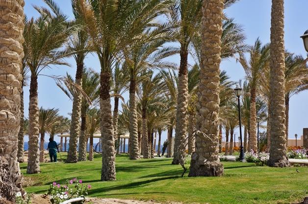 Royal Brayka Resort Marsa Alam 4 - Well-being programma Royal Brayka Resort, Egypte