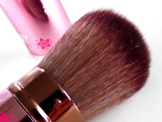 bornprettystorebrush4 - Born Pretty Store | Retractable Brush