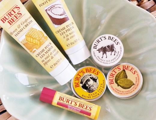 Burt's Bees kit reviw