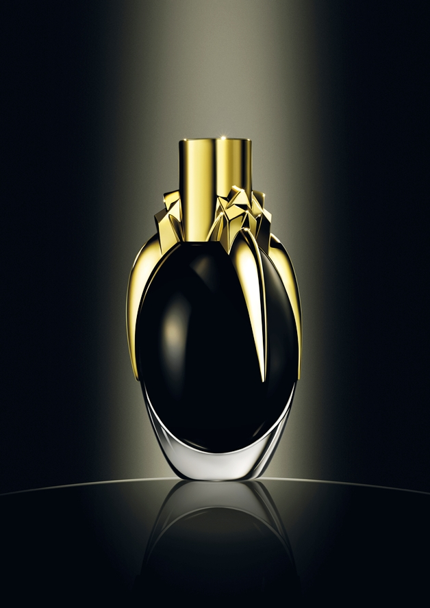 ladygagafame2 - Newsflash! | Lady Gaga Fame EdP