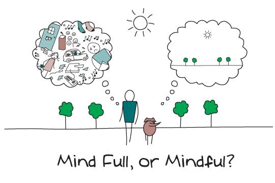 mindfulness 1 - Mindfulness