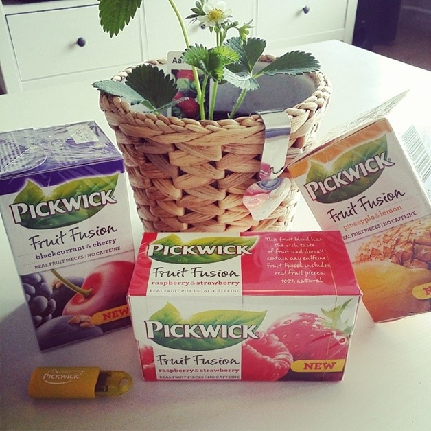 pickwick fruit fusion - Random things & new in's #3