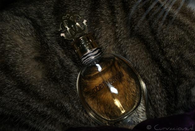 robertocavallieaudeparfum1 - Roberto Cavalli   Eau de Parfum
