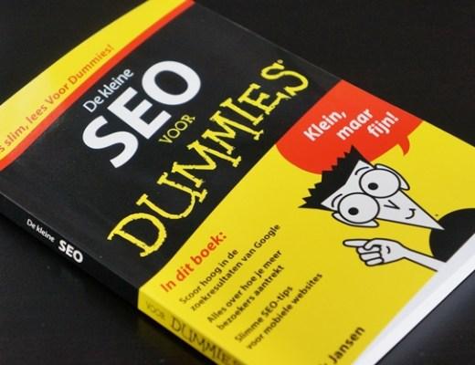 seo voor dummies 1 - SEO voor dummies