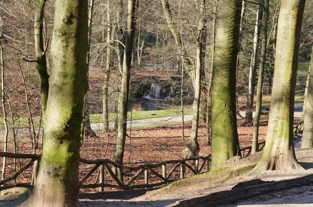 walkinthepark6 - Een winterse wandeling in Park Sonsbeek