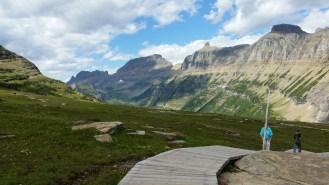 Alpine meadow is protected by boardwalks in sensitive areas