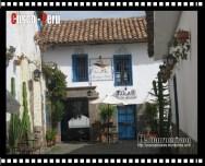 Calle Tocuyeros