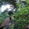 Trekking in Langkawi