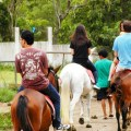 horse back rinding, recreational activity