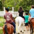 horse back rinding, recreational activity