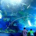 Underwater World in Pattaya