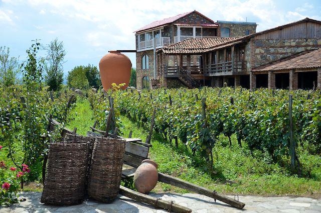 kakheti, wine, georgia,