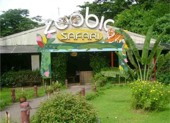 zoo, subic, philippines