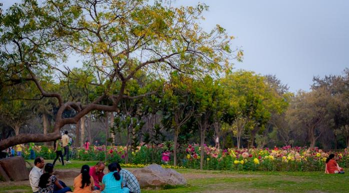 park, new delhi, india