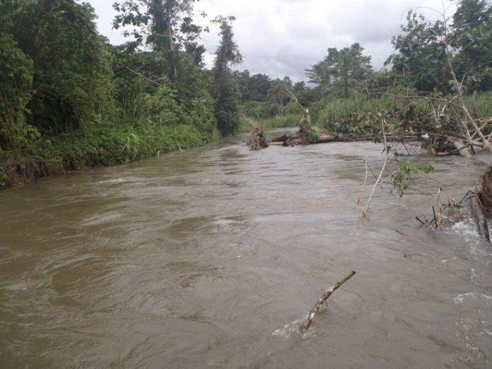 brown river, sepik river, papua new guinea