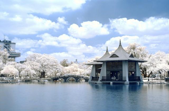 taichung, park, taiwan