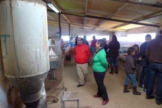 Visita a la quesería Caprilac (10)