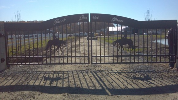This is an image of custom made dual swing driveway gate with a pleasure horse on each side and custom lettering that says Shank Quarter Horses.