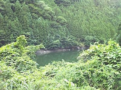 tenkawamura2.JPG