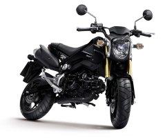 Honda MSX125 20