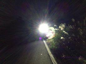 LEDlight 250SB 06