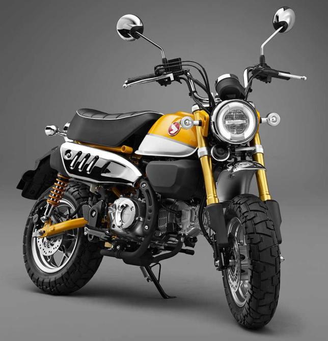 Monkey125 concept 03