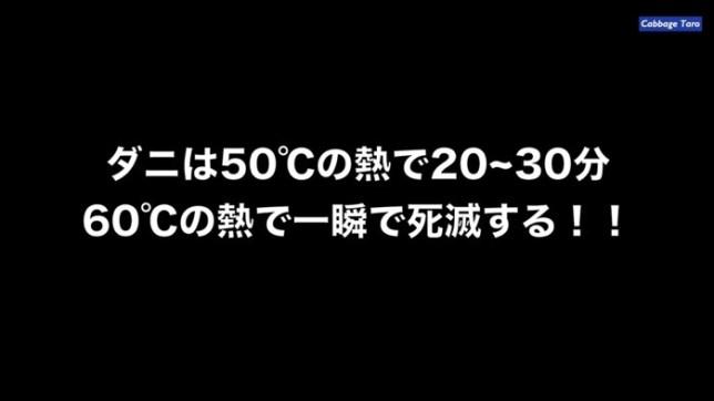 Nebukuro daniwaita 02